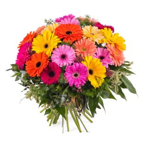 Bouquet of multicoloured Gerbera Daisies